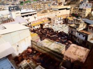 Fez Medina 2