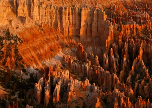 Bryce Canyon National Park, Utah, taken at sunrise. There's nothing more to say.